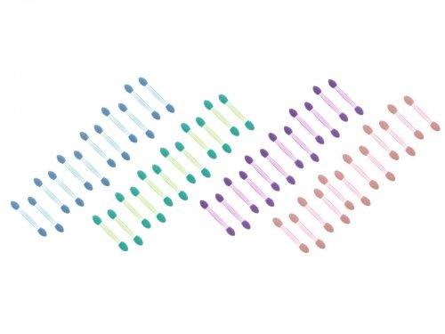 Πινελάκια σκιών σε χρώματα, σετ 12 τμχ